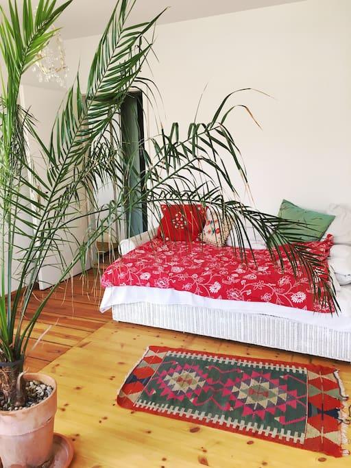 guest room bedsofa