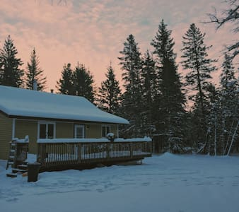 Little Retreat in the Forest - North of Gimli - Camp Morton