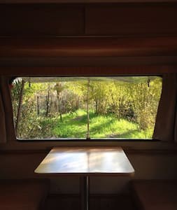 Camper in a beautiful orchard surrounded by nature - Bat Shlomo - Camper/RV - 1