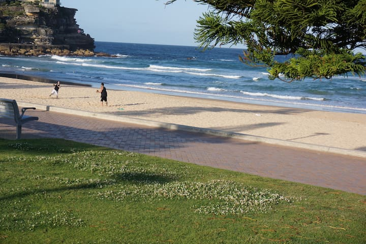 Manly beach + parkland apartment - Manly - Wohnung