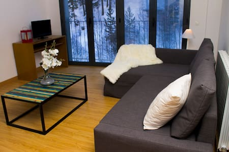 2 bedroom apartment in Canillo - 卡尼略(Canillo) - 公寓