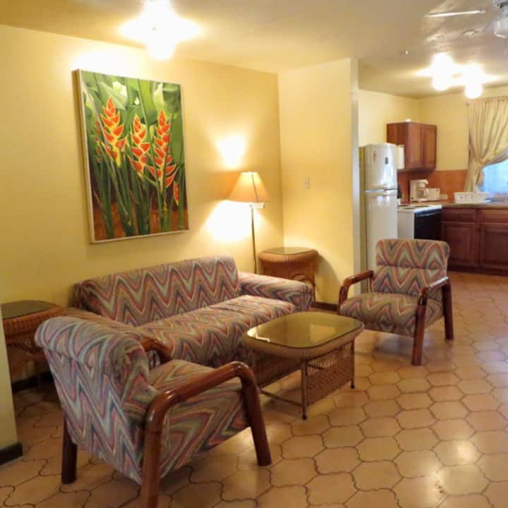 Cozy Inn Apt 2 - In a central, Residential area