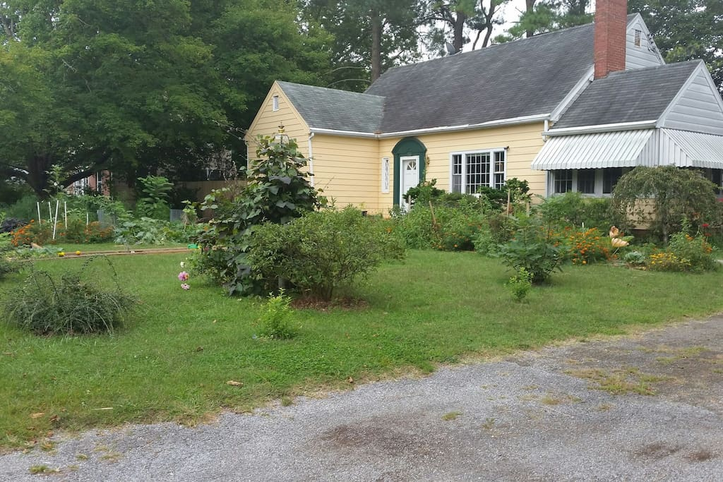 Front Garden and House
