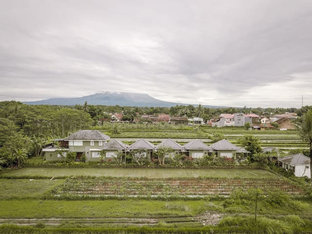 Modern Rice Field Villa with Mountain View
