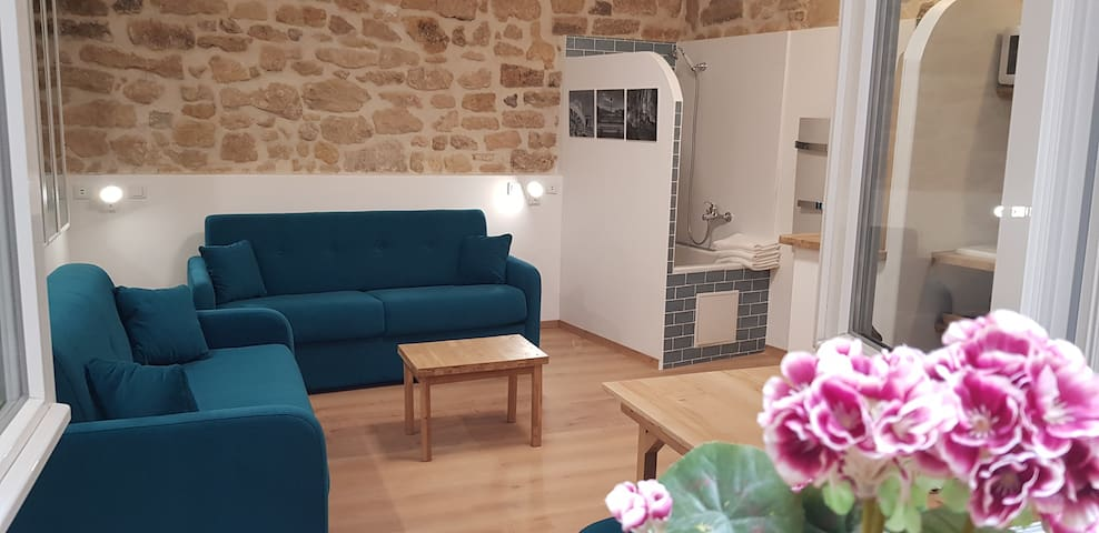 New beautiful studio in the center of Paris 75005