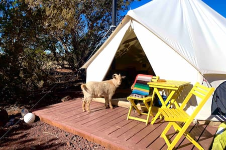 Invigorate Glamping by the Grand Canyon