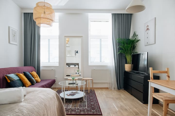 Explore Vienna from Homey and Bright Apartment