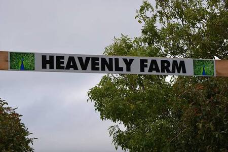 Hevenly Farm B&B - Boat Harbour
