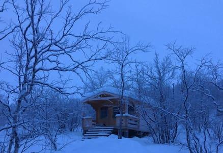 Koselig hytte midt i Sápmi/ Isaacbu.