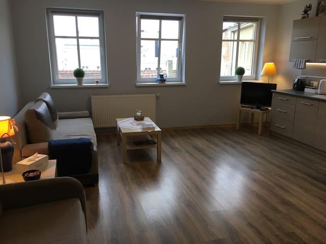 Apartament ŻAK w Śródmieściu no. 9! - Leszno - Apartment