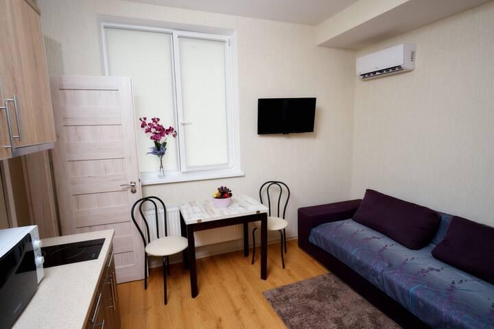Central view apartment (23d floor)