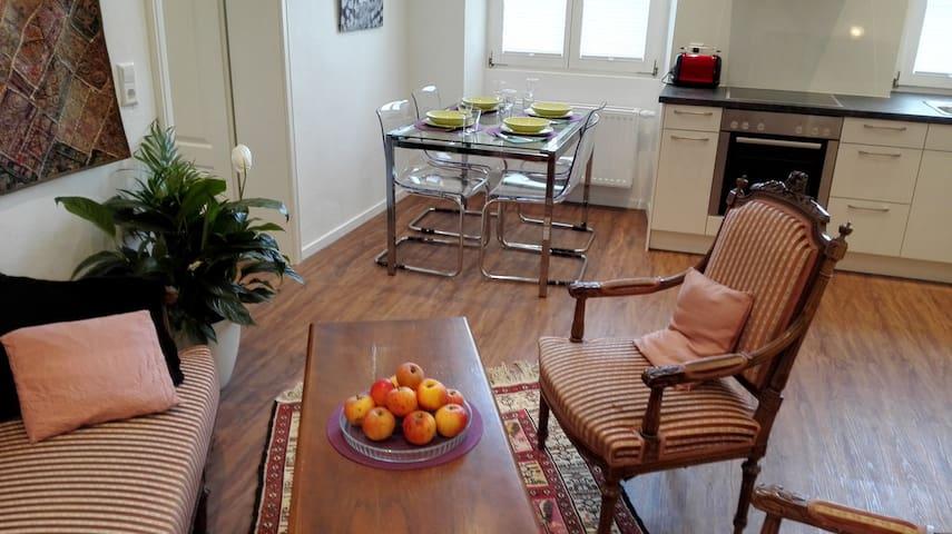 """Moderne 2-Z. Wohnung in """"Altem Zollhaus"""" - Klettgau - Apartemen"""