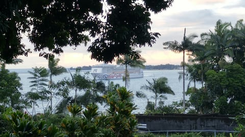 Watch the ships pass at Hilo Bay View Cottage