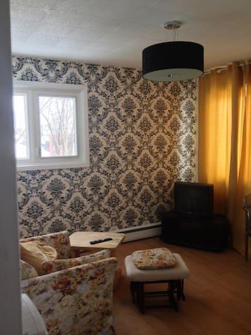 7 Minutes du coeur d'Ottawa. Appartement complet - Gatineau - Apartment