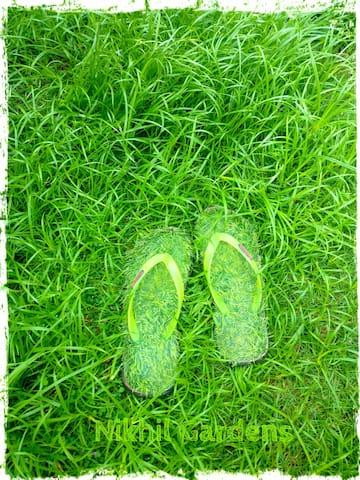 Lush Green#Peace#Love