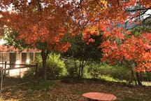 Sidling House in Autumn