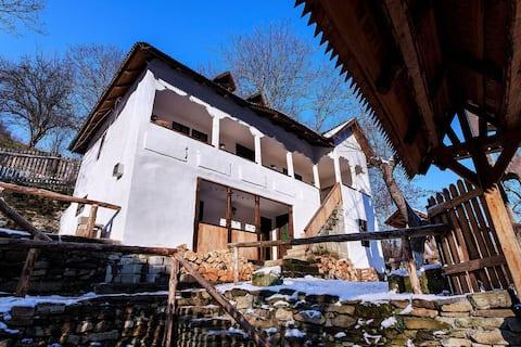Conacul Mantescu, Noble Manor in rural Carpathia
