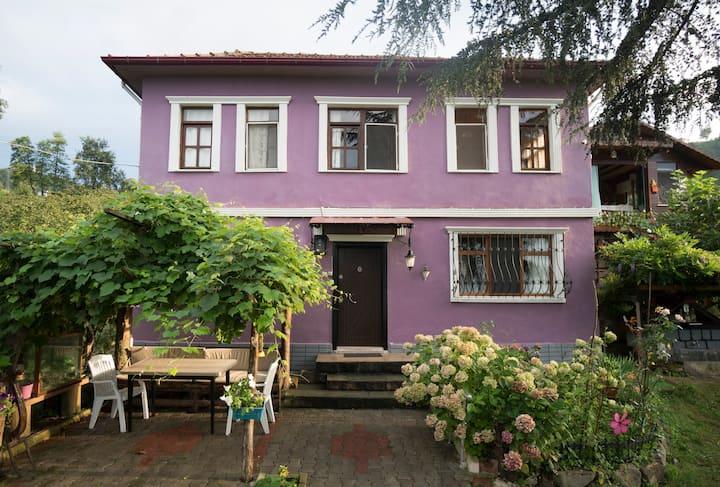 Great Black Sea View Village House