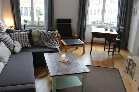 2-Raum Altbauwohnung + Bad&Küche- hell & gemütlich - Dresden
