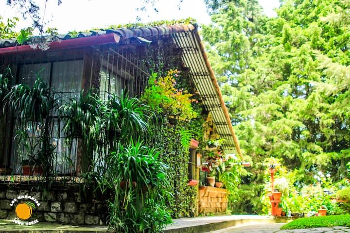 Casa Mosaico Los Naranjos Town Houses
