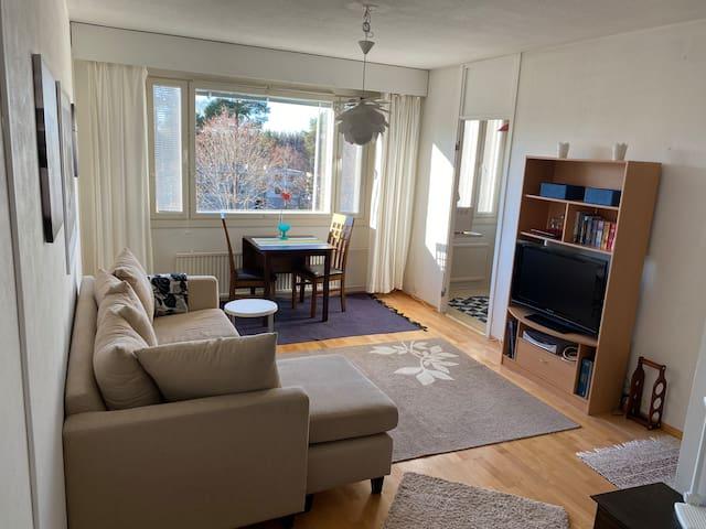 Viihtyisä yksiö/Cozy apartment in Porvoo
