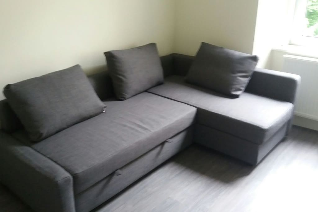 Comfortable sofa bed for friends to use