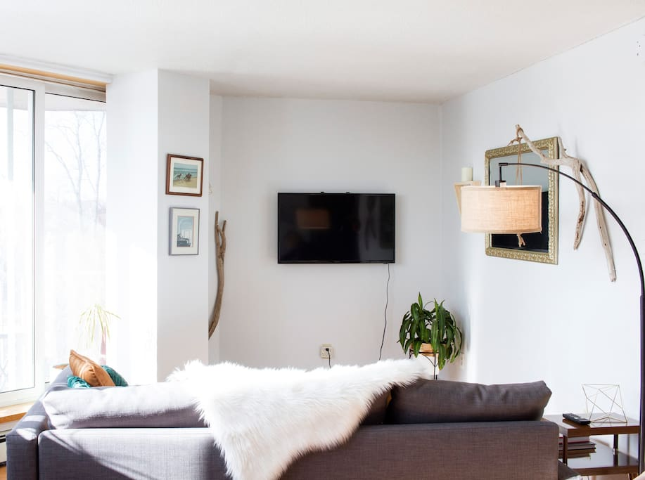 A 40 inch TV with Netflix, board games, and lots of reading material. The living room gets tons of light from the balcony doors all afternoon.