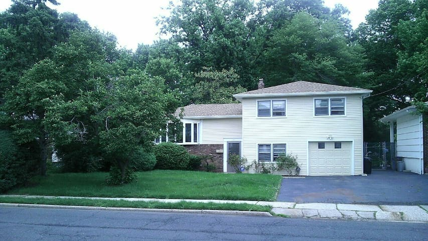 Beautiful house with apartment attached - Roselle