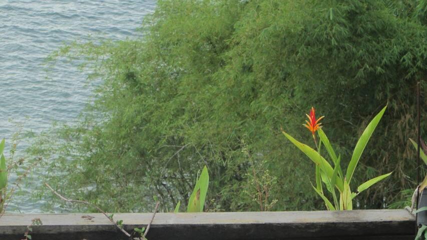 LoftLiving: sea, sunset, nature inc - Salvador - Loft