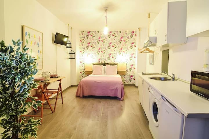 Nice and central pink Loft MALAGA