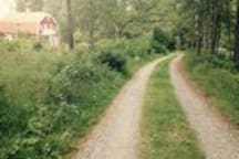 Main (private) road to house, no traffic, secluded area.
