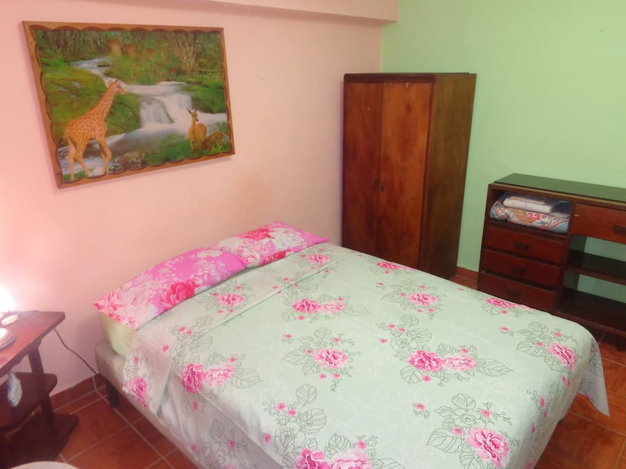 This is the room this listing rents out. Private bath and A/C. Plus a picture of giraffes by the river. Very Cuba.