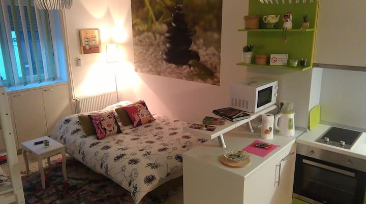 Studio apartman Stari Grad FREE PARKING