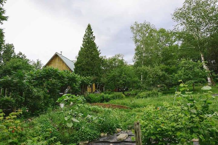 Dan, la maison aux pignons verts.