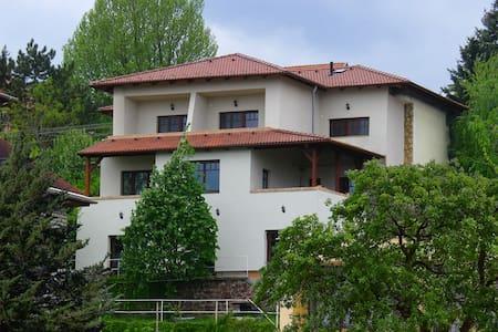 apartman 200 méterre a Balatontól - Balatonalmádi