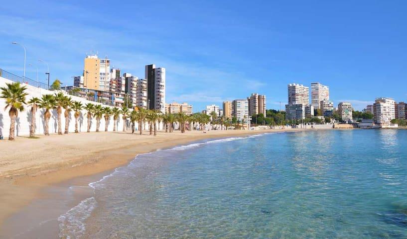 Studio Alicante - Albufereta beach (sun & beach)