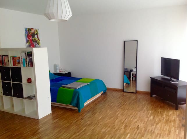 Nice flat close to Basel World - Bazel - Appartement