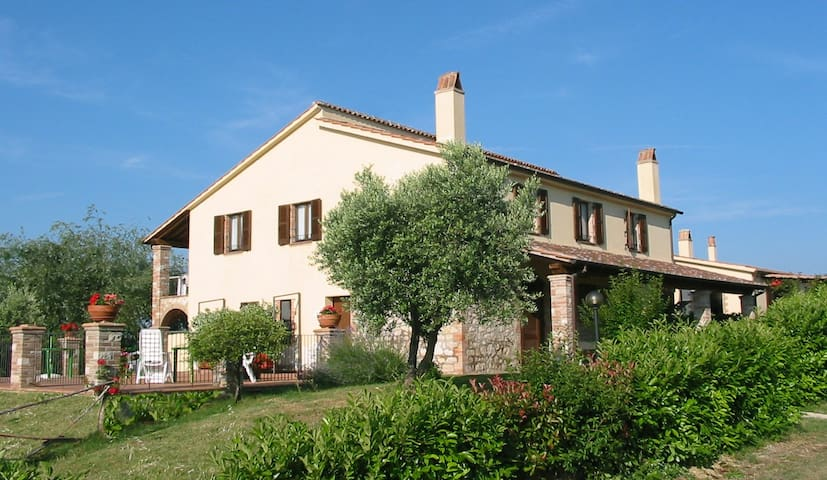 Ginestra countryside apartment