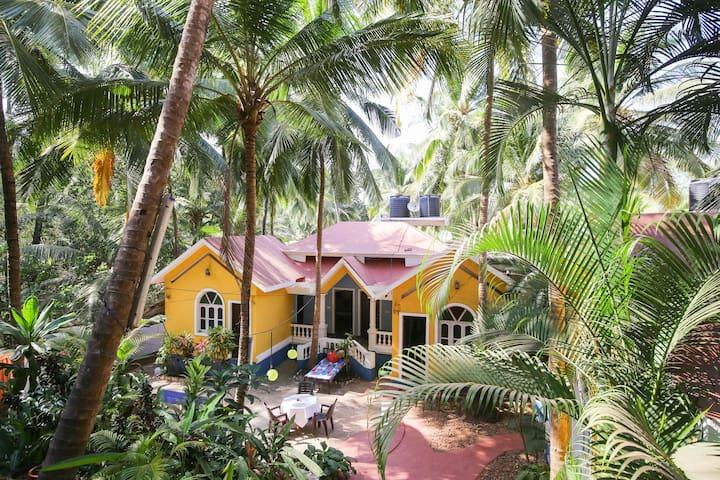 Bella Ananda Resort - Goa - Vagator - Lägenhet