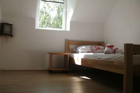 Rooms 7, A&A Hostel, Novi Sad