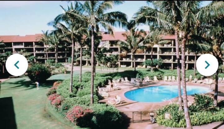 Florida Vacation Villas 2 BDRMS deluxe