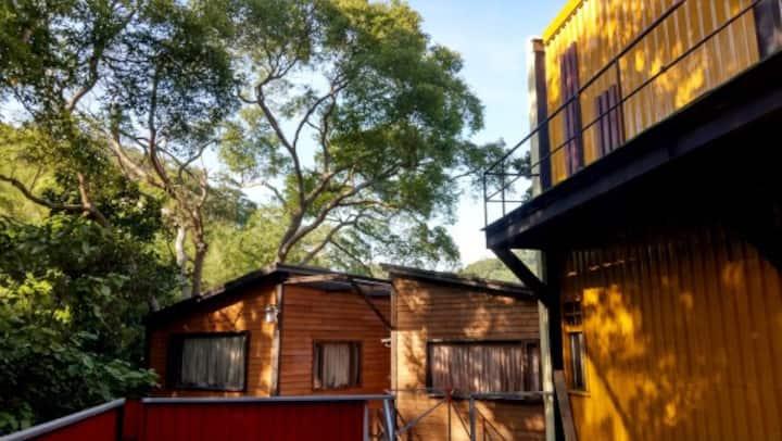 特色山居-老樹木屋 2人房