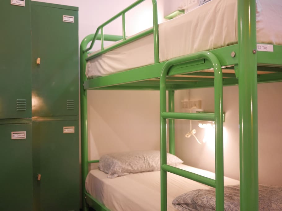Beary's Private 6 Bed Dorm