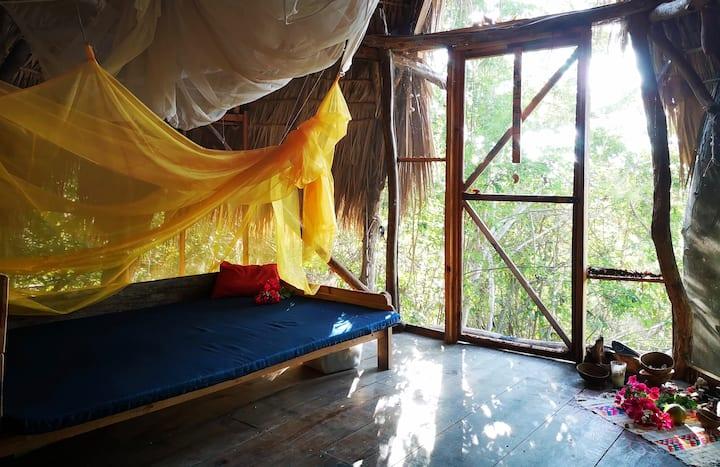 BUDA Casa Árbol -- BUDA Tree House
