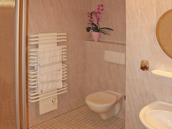 Pension Droste-Vogt, (Schmallenberg), Doppelzimmer mit WC und Dusche