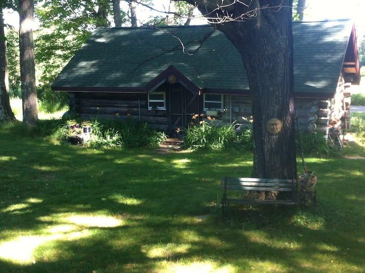Historic one-room log cabin