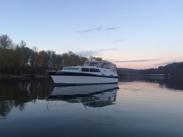 G-Force Cabin Cruiser Get Away - Kalama - Boot