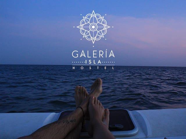 Share room in Galeria Isla Ecohostel - Cartagena