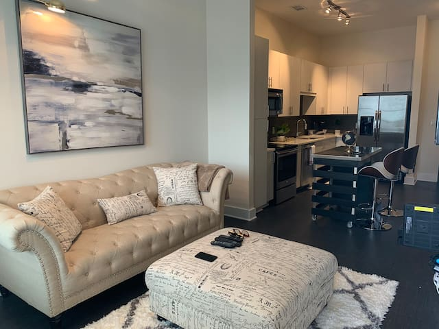Luxury Apartment in Heart of Buckhead