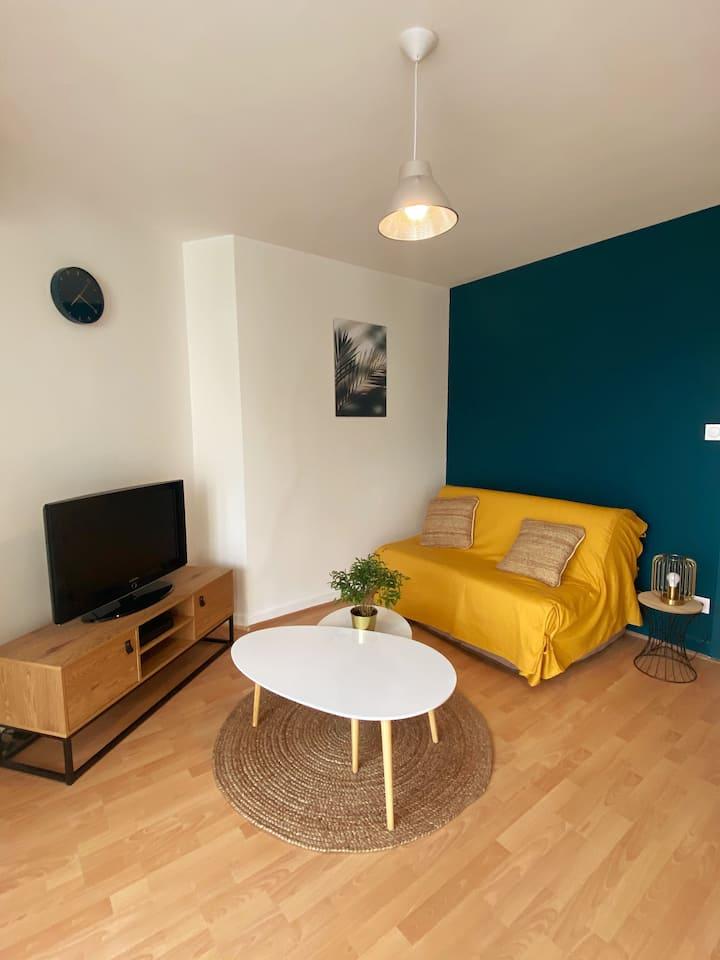 Grand studio 42m2 refait à neuf Place Dupuy